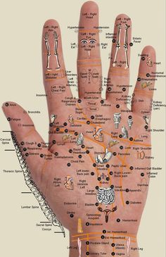Acupuncture - An Ancient and Secret Method!