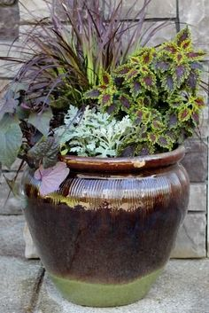 Container Gardening Ideas | Mavis Garden Blog - Ideas for Summer Container Gardening | One Hundred ...