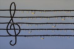 water drops, heart, musicals, nature, songs
