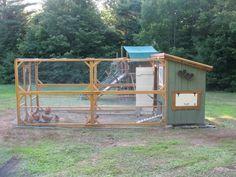 Chicken coop--good predator-proofing ideas