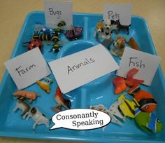 Dollar Tree Categorization Activity -  Pinned by @PediaStaff – Please Visit http://ht.ly/63sNt for all our pediatric therapy pins