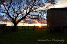 My Aussie Outback - Photo taken by Me.  Sabrina Perri