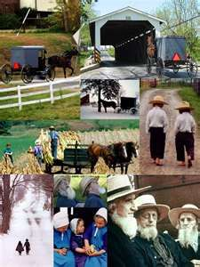 Amish in Wooster, Ohio