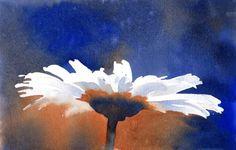 Watercolor Art Daisy