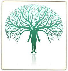 bucketlist, genealog websit, top 10, family trees, famili tree