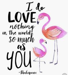 Funny Flamingo Memes for those that like us that love all things Flamingos #flamingo #flamingoparty #flamingomemes #funny #jokes #memes #turtles #beachdays #shakespeare