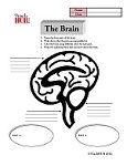 Grade: 3-5 Science: The Brain Printable Worksheet Assignment...Use this printable science worksheet for a review lesson on the parts and function of the brain during your human body unit journalsschool scrapebook, human body unit, health lesson, scienc experi, educ journalsschool
