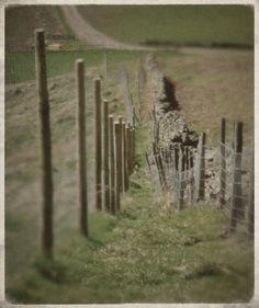 fences via tremulantdesign