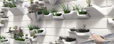 Close up of several Planter Bricks on facade #verticalgardens animals, bricksbird, green wall, 3dprint, planter brick, citi green, planters, paint planter, planter boxes