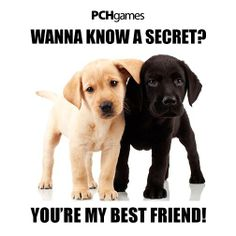Awww #PCH knows all about friends (Smiles)