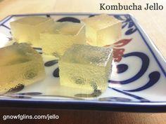 Kombucha Jello jello shots, kombucha jello, ferment food