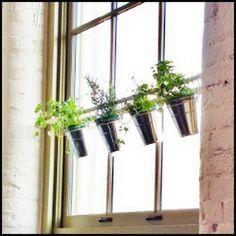 Herb Garden On Pinterest Herbs Garden Window Herb