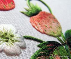 Needle Painting Embroidery: Strawberries