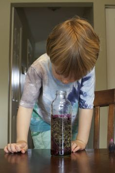 Lava Lamps | Activities For Children | Outdoor Play, Science | Play At Home Mom