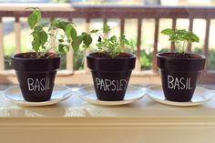 pebeo chalkboard paint + planters = simple indoor herb garden