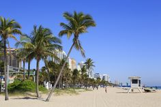 Fort Lauderdale Beach isn't the spring-break destination it once was, although you can still find outposts of beach-bummin' bars and motels in between the swanky boutique hotels and multimillion-dollar yachts. Few visitors venture far inland except maybe to dine and shop along Las Olas Blvd; most spend the bulk of their time on the coast, frolicking at the water's edge. The promenade – a wide, brick, palm-tree-dotted pathway swooping along the beach – is a magnet for runners and cyclists.