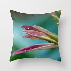 Radiant Orchid Pillow Large Sofa Pillows by CrystalGaylePhoto, $30.00