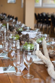 coastal wedding tablescape with driftwood & succulent terrariums (which guests got to take home as a favor!)
