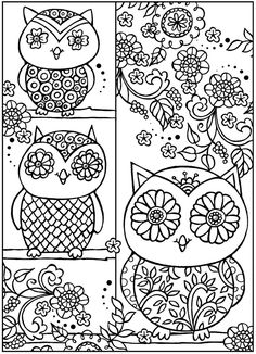 Welcome to Dover Publications owl color, coloring books, color book
