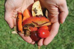 How to Vermicompost: The Scoop on Worm Poop scoop, garden miscellan, grit magazin, vermicompost, landscapinggarden idea, worm composting, worm poop