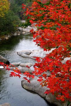 autumn in the White Mountains, NH