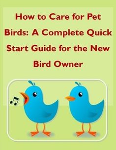 How to Care for Pet Birds: A Complete Quick Start Guide for the New Bird Owner