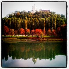 Its time for Autumn to show how beautiful it can be! #Turin #Italy #Po #Love #Autumn #Autunno #Fall #Payiz #Sonbahar #Photooftheday