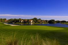 Grand Cypress North Course - 2nd Hole
