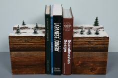 BookEnds of the Earth, Winter Series.