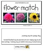 Flower Match File Folder Game