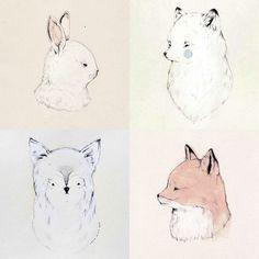 Animal drawings / Sarah McNeil