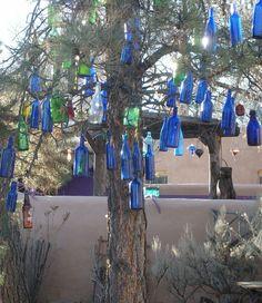 I want  a bottle tree!
