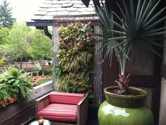 Susan Cohan design for Green EcoWalls #verticalgardens #greenwalls garden grow, vertic garden, urban balconi, citi garden, garden idea, balconi garden, balconi layout