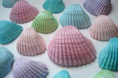 Mermaid party painted shells