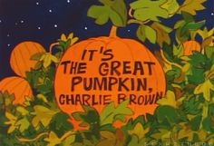 #lol #humor #funny gif charlie brown peanuts