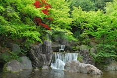 Waterfall in a Japanese zen garden koi pond, zen garden