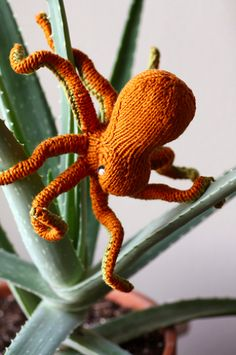 knitted octopus
