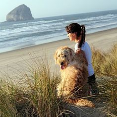 Our Favorite Dog-Friendly Beaches | Plan A Getaway with Your Pup | CoastalLiving.com