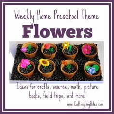 Flower Theme- Weekly Home Preschool.  Science, crafts, picture books, math, spatial, and more!  Plenty of ideas for one week of home preschool.
