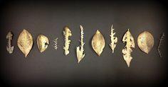 Bronze cast leaves