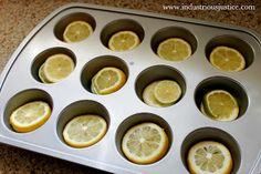 Lemon & Lime Ice Cubes
