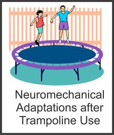Your Therapy Source - www.YourTherapySource.com: Neuromechanical Adaptations Following Trampoline Use