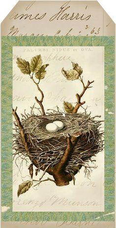Bird's nest art tag via Lilacs and Lavender