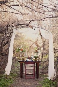 Hidden Forest Wedding Ideas