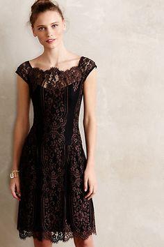 Leopold Lace Dress - anthropologie.com