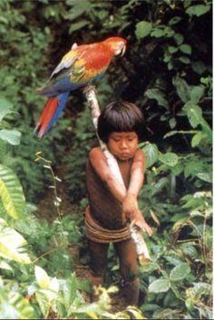 Xerimbabo, 19 de abril seu pet tem essa denominação. Era assim que os índios tupis chamavam os seus animais de estimação. O francês Jean de Léry (1534-1611), durante as pesquisas que fez para o livro Viagem à Terra do Brasil (1578), observou que uma índia se referia ao seu papagaio utilizando  o termo cherimbane, coisa muita querida em tupi. O termo está incorporado à nossa língua, o que faz dela uma das poucas do mundo que contam com um nome específico para designar um animal de estimação.