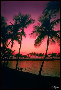 hawaii favorit place, hawaii favoriteplacesandspac, hawaii sunset, hawaii spielautomat, beach, space, paradise, beauti photo, photographi