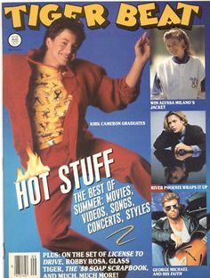 Tiger Beat magazine.  Oh, the days of David Cassidy and Donnie Osmond!