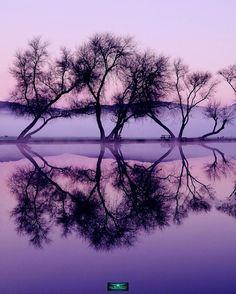 Amazing Pics Reflections #photography