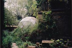 Futuristic greenhouse